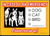 In Case of Emergency Card