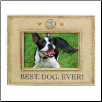 Best Dog Ever! Photo Frame (SKU: GL-469733)