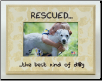 RESCUED...Wooden Photo Frame