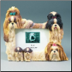 Shih Tzu Photo Frame (SKU: DBBreed-ShihTzuFrame)