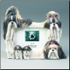 Black & White Shih Tzu Photo Frame (SKU: DBBreed-BlackWhiteShihTzuFrame)