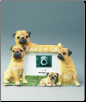 Pug Photo Frame (SKU: DBBreed-PugFrame)