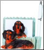 Black Dachshund Pet Note Holder (SKU: DBBreed-BlackDachshundPetnotes)