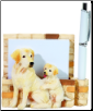 Yellow Labrador Pet Note Holder (SKU: DBBreed-YellowLabradorPetnotes)
