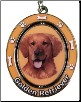 Golden Retriever Dog Key Chain by E&S Imports