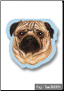 Sticky Notes - Pug, Dog, Puppy, Note Pad by Little Gifts