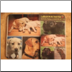Labrador Mouse Pad & Coasters Set by Little Gifts