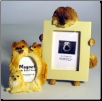 Photo Frame & Magnet Frame Set - Pomeranian (SKU: DB-pomeranianFF)