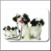 Shih Tzu Mouse Pad & Coasters Set by Little Gifts