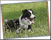 "Personalized Woven Photo Blanket - 54"" x 60"""