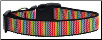 Rainbow Zig Zaggy Dog Collar