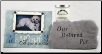 Memories of  a Beloved Pet Sympathy Gift