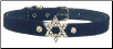 Star of David Collar (SKU: PP-SODC01)