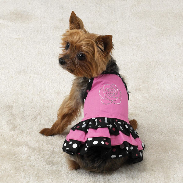 Designer Dog Clothes, Dog Shoes, Dog Coats & Sweaters ...