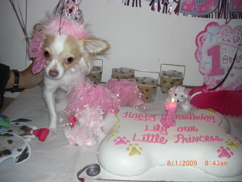 lilly birthday2.jpg