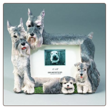 Schnauzer Photo Frame