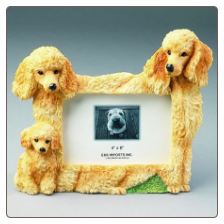Apricot Poodle Photo Frame