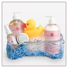 Bone-Shaped Dog Spa Basket