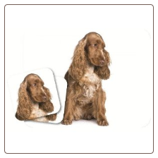 Cocker Spaniel Mouse Pad & Coasters Set by Little Gifts