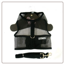 Netted Harness w/Leash - Black