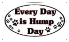 Novelty Magnet: Every Day is Hump Day -  Dog Lover Gift
