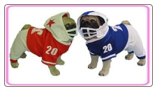 Football Pet Halloween Costume