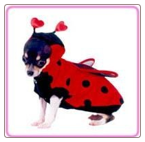 Ladybug Pet Halloween Costume by Puppe Love