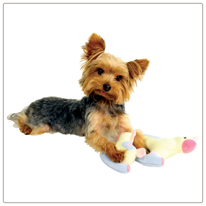 Rocking Horse Dog Toy