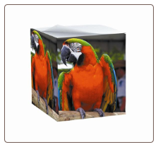 Personalized Photo Note Cube Sticki Notes