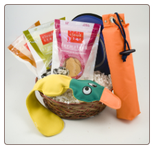 Healthy Swimmer Dog Gift Basket