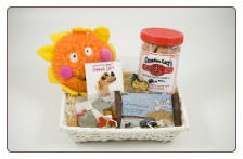 A Little Sunshine Dog & Owner Get Well Basket